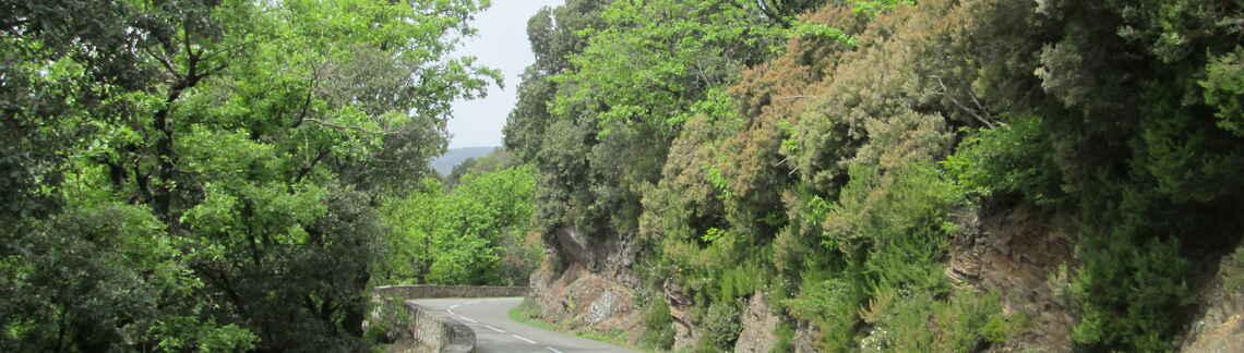 Col de Madale