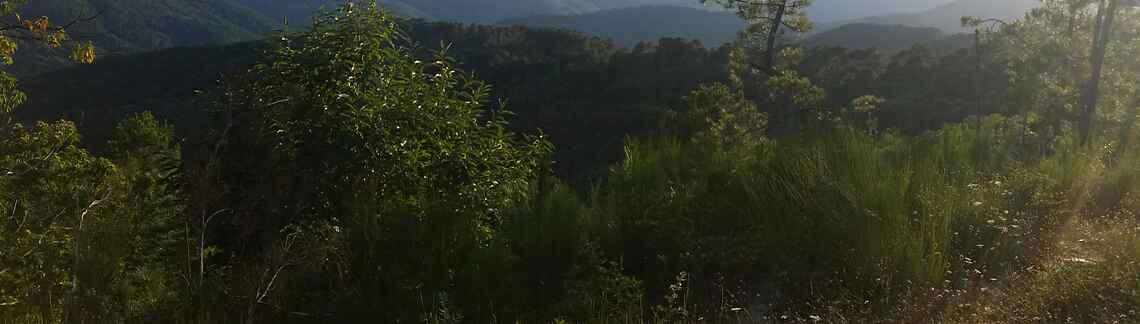 Col de Pendedis