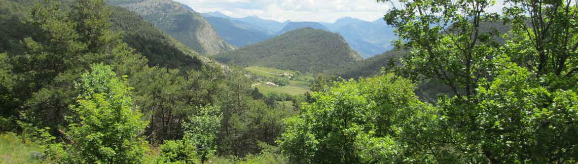Col de Chamauche
