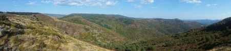 Montée : Serre Long depuis le ruisseau de Trabassac, Commentaire : Lorsqu'on rejoint la D13 (le sommet)...
