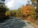 Montée : Col de l'ecre depuis Chateauneuf de Grasse, Commentaire : Paysage d'automne sur la partie quasi plate de la montée