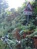 Montée : Col de Saint Thomas depuis La Bombarde, Commentaire : les 2 derniers kms de montée...