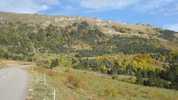 Auteur : Loic L, Commentaire : Dernier km du col de Grimone ( Octobre 2011)