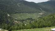 Auteur : Loic L, Commentaire : Le champ au beau milieu de la forêt est une vigne. C'est un régal pour les yeux...