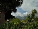 Montée : Col de Castillon depuis Menton