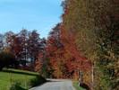 Auteur : Loic L, Commentaire : Ces couleurs sont exceptionnelles... Cette région précise est la plus belle en automne... j'ai pas vu mieux.