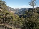 Auteur : Greg R, Commentaire : Vue sur la forêt de Boucheville (depuis un peu plus haut)