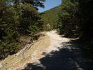 Auteur : Greg R, Reactie : Vers 1400m, place à la forêt, pentes encore importantes mais plus pour très longtemps.