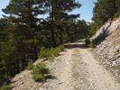 Montée : Col de Portus depuis Jujols, Commentaire : Un chemin pas mal empierré, comme sur une bonne partie de la montée.