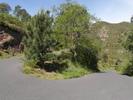 Montée : Col de Banyuls depuis Banyuls, Commentaire : Dans les 2 derniers kilomètres