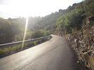 Montée : Col de Banyuls depuis Banyuls, Commentaire : La belle route du début bordée de cactus, mais ça ne va pas durer.