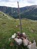Montée : Col Mitja depuis Fontpédrouse, Commentaire : Le panneau...tombé du poteau et bien rouillé.