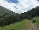 Montée : Col Mitja depuis Fontpédrouse, Commentaire : Le col depuis la clairière vers 2000 m