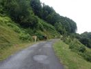 Auteur : Florent L, Commentaire : Comme souvent dans les Pyrénées, les animaux occupent la route. La nature récupère tous ses droits.
