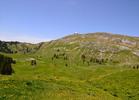 Montée : Chalet de la Dôle depuis Gingins, Commentaire : Le Chalet (fin de la route) au pied de la Dôle, vue du Col de Vuarne.