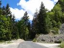 Montée : Col de Colliard depuis Les Neyrolles, Commentaire : Dans le col.