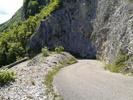 Montée : Col du Grand Colombier depuis Culoz, Commentaire : Ah, les fameux virolets !