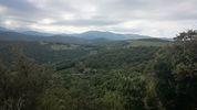 Montée : Col Fourtou depuis Calmeilles, Commentaire : Vue vers le massif du Canigou.