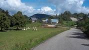 Montée : Col du Mont Noir depuis Cognin les gorges, Commentaire : Le petit village de Malleval à la sortie des gorges