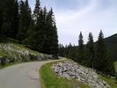 Montée : Col de Joux verte depuis Montriond, Commentaire : Après Les Lindarets et tout ses touristes, vive les Sapins !