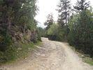 Montée : Refuge des Cortalets depuis Villerach, Commentaire : vers 1950 m piste pas très bonne.